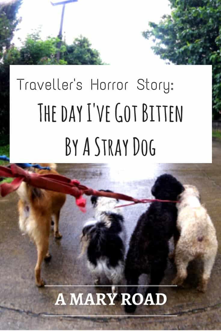 The day I've got bitten by a stray dog