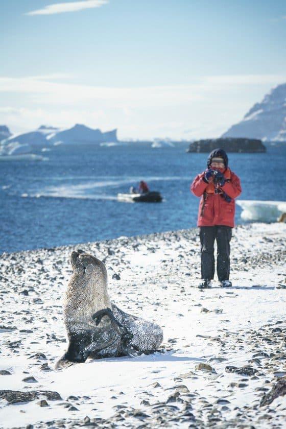 Antarctica Cruise Pictures