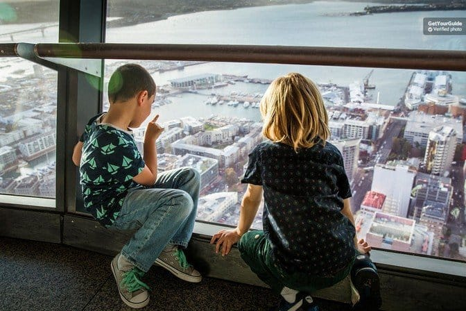 family activities in auckland