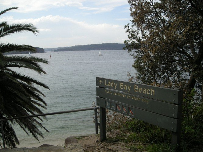 4 Most Uncommon Activities to Do in Sydney