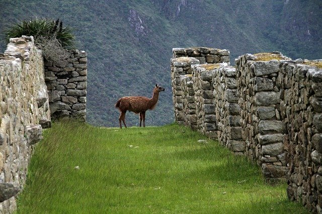 WHERE TO STAY IN AGUAS CALIENTES - Luxury Hotels, Mid-range Hotels, And Affordable Hostels