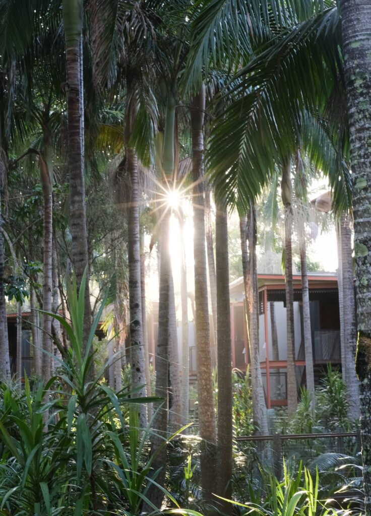 The 6 Best Airbnbs in Byron Bay, Australia 1